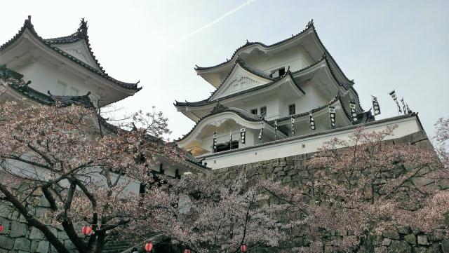 伊賀上野城…忍者の里