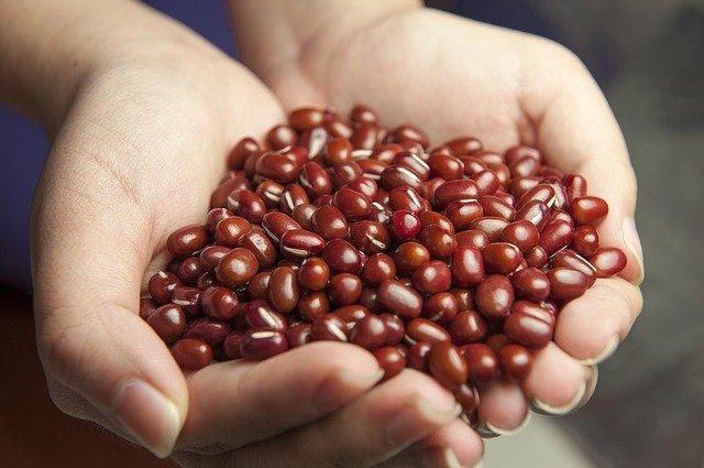 厳選された有機小豆を使用