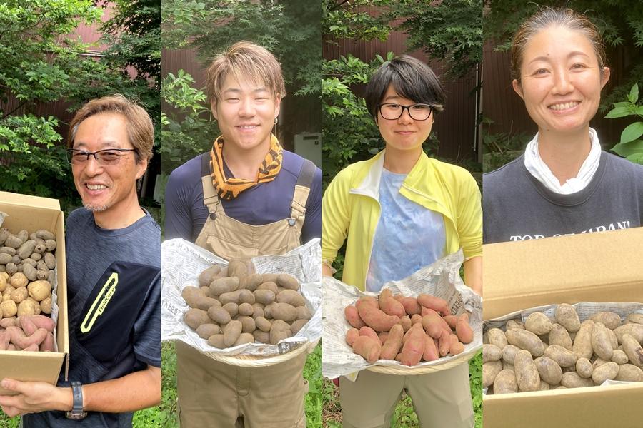 キタアカリ・シャドークイーン・ノーザンルビーが収穫できました