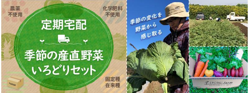 茨城県龍ケ崎市自社農園のさつまいも三姉妹4kg3,500円(税込み)